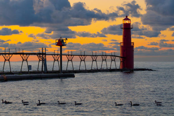 Majestic lighthouse silhouetted in the twilight, geese swimming past. stock photo