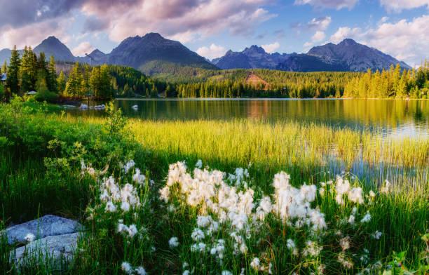 Majestueux lac de montagne dans le Parc National de Tatra débit. - Photo