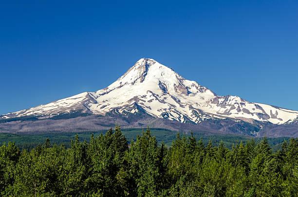 Majestic Mt. Hood stock photo