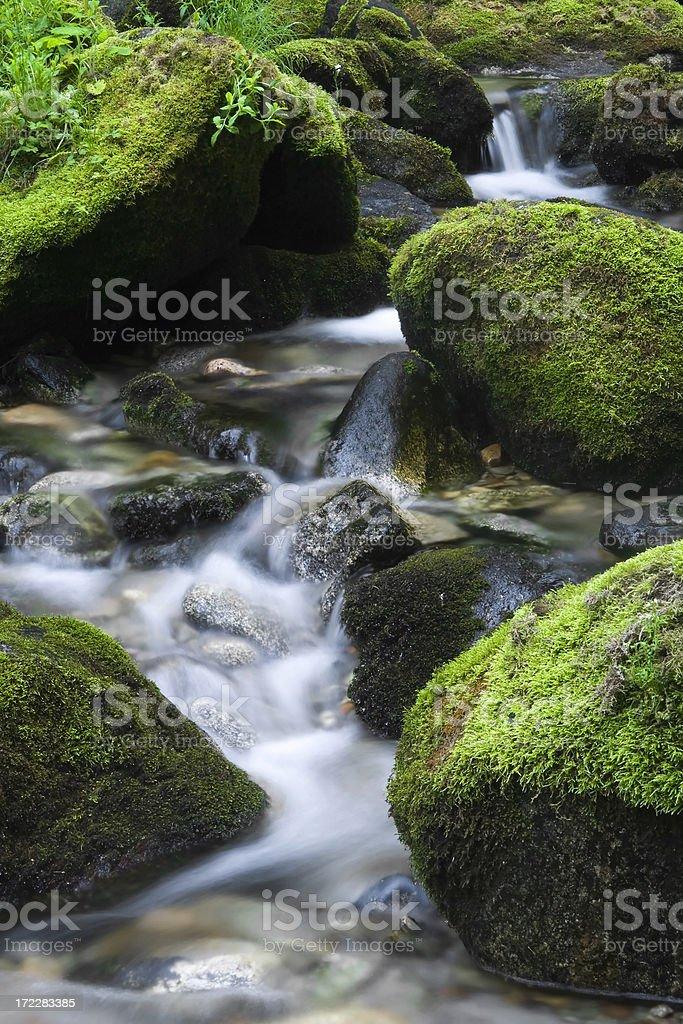 Majestic stream royalty-free stock photo