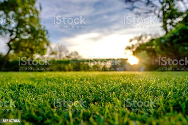 Photo of Majestic sunset seen in late spring, showing a recently cut and well maintained large lawn in a rural location.