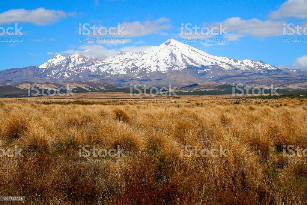 Majestic Tongariro volcano Snowcapped Mountain range and Glaciers landscape, North New Zealand stock photo