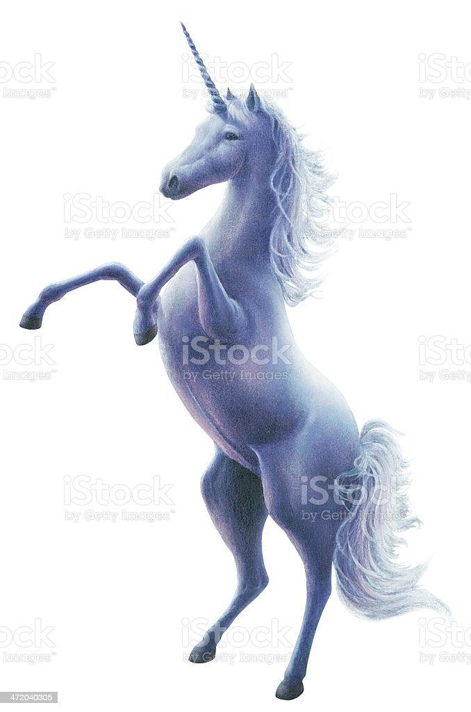 Majestic Unicorn stock photo