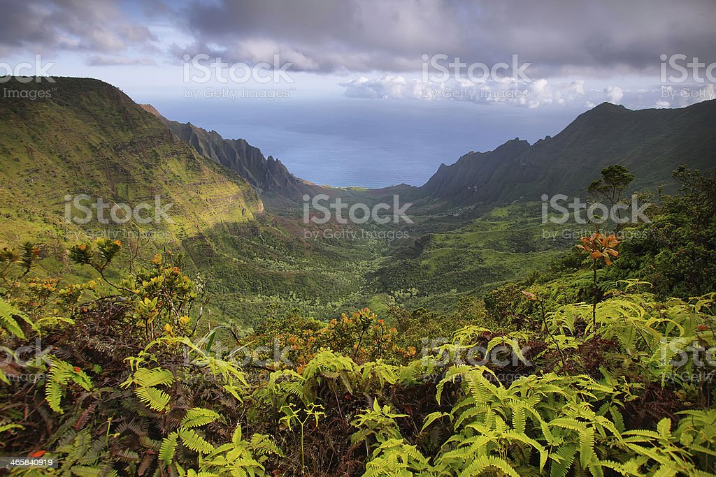 Majestic views of Napali coast from Kalalau lookout stock photo