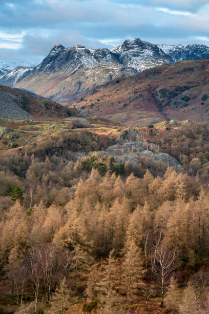 Majestic Winter landscape image view from Holme Fell in Lake District towards snow capped mountain ranges in distance in glorious evening light with Autumnal colors trees stock photo