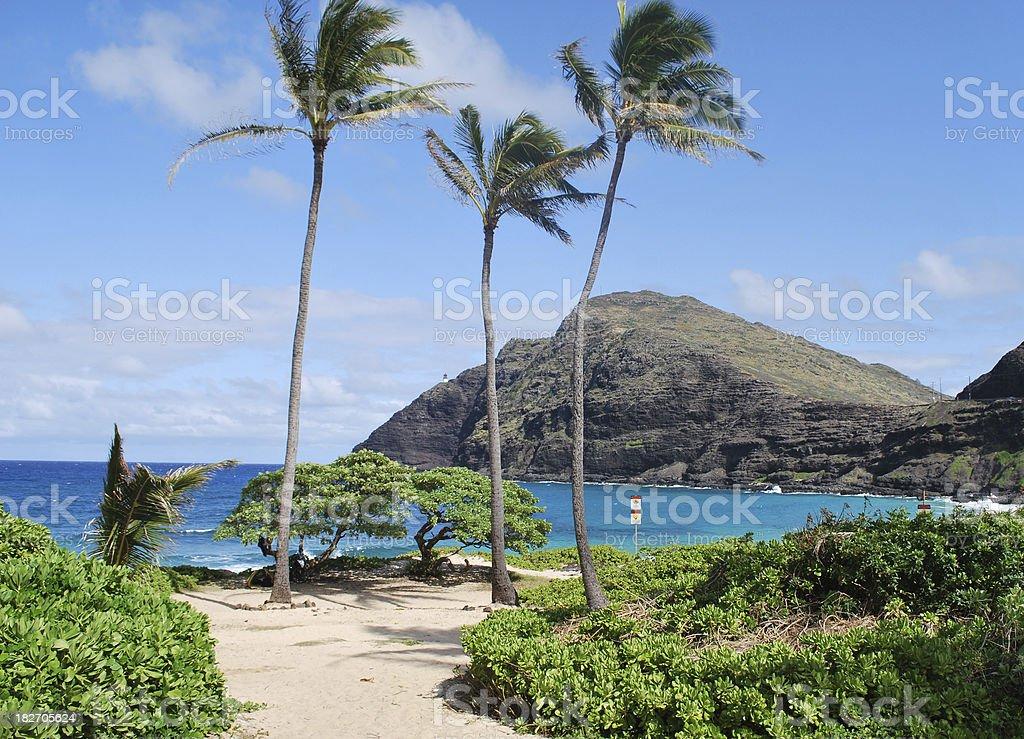 Makapuu Beach Park in Oahu. stock photo