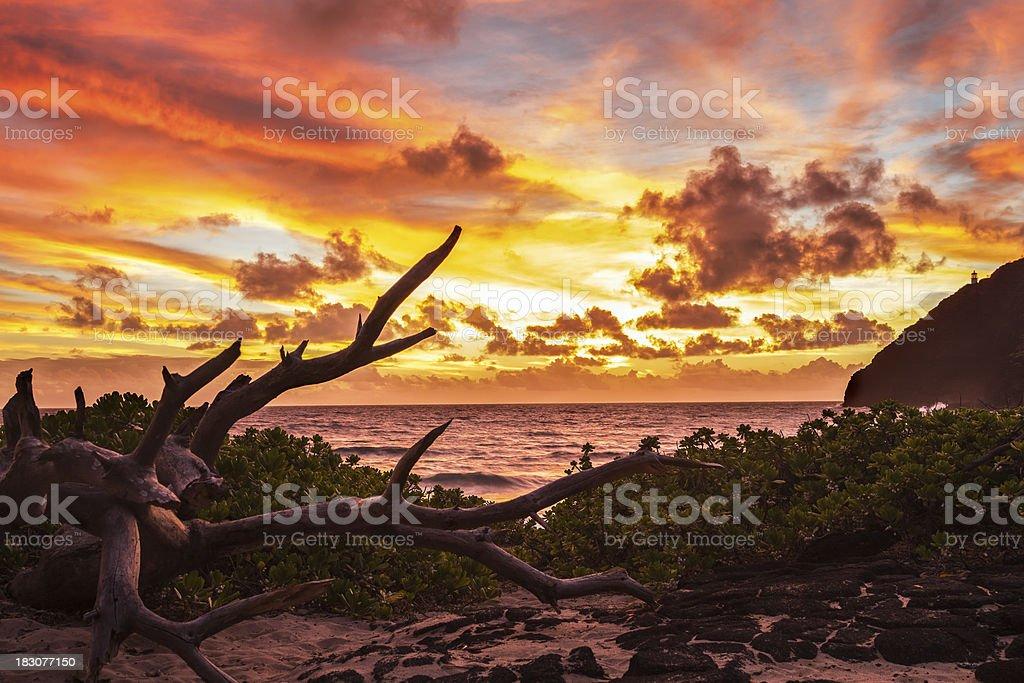 Makapuu Sunrise stock photo