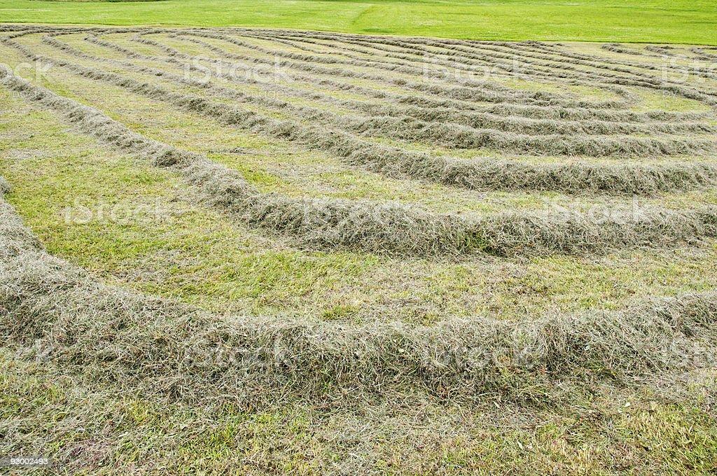 make straw stock photo
