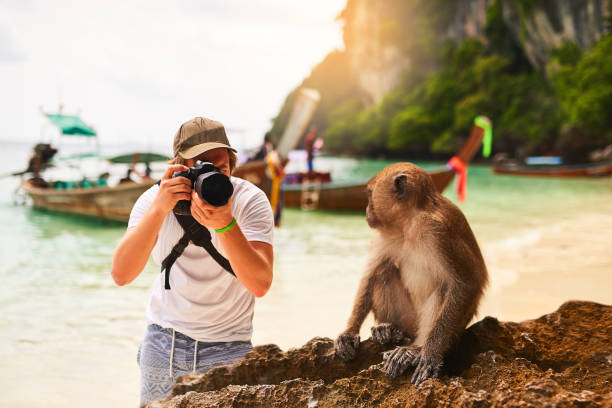 certifique-se de ter bons lado - viagem pela vida selvagem - fotografias e filmes do acervo