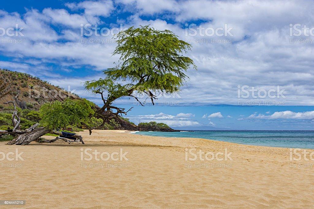 Makena Big Beach near Wailea Maui Hawaii USA stock photo