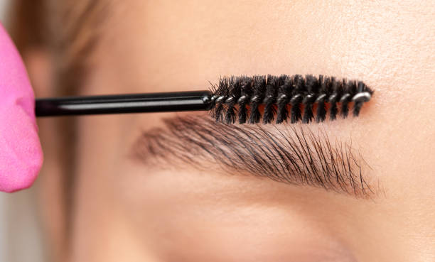 Makeup artist combs eyebrows with a brush after dyeing in a beauty salon.Professional makeup and cosmetology skin care. stock photo