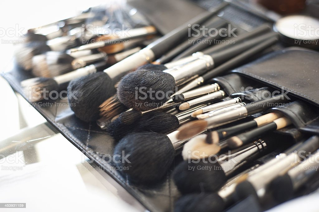 Makeup Brushes in Case stock photo