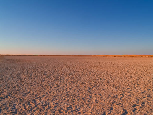 Makgadikgadi Pans National Park Makgadikgadi Pans National Park, scenic large flat area of salt pan desert of Botswana horizon over land stock pictures, royalty-free photos & images