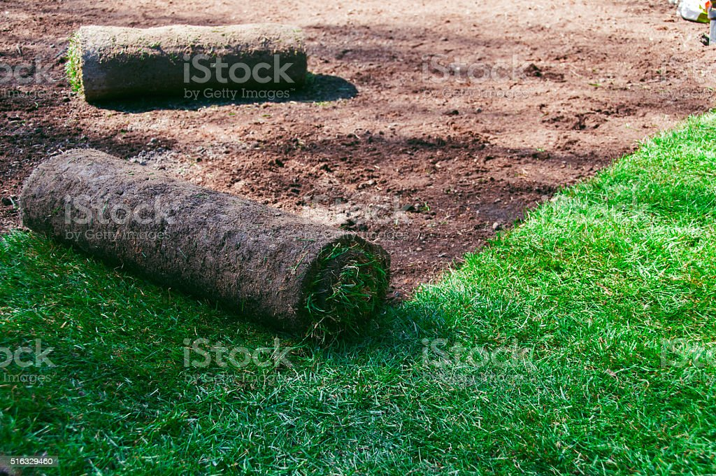 Roll out grass on the ground