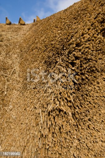 istock Making a New Traditional Style Thatched Roof 182199560