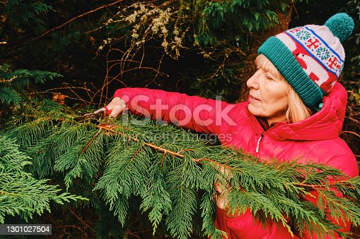 Woman cutting branches to make a foliage vase at Christmas, part of a series.