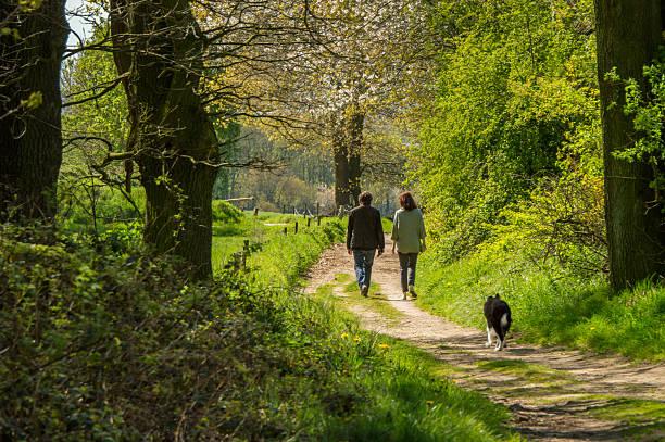 Making a walk in the fields in springtime picture id537306396?b=1&k=6&m=537306396&s=612x612&w=0&h=rv7onjee2bjzvgsyvgkjfppx1mvufifulprjajdfhi4=