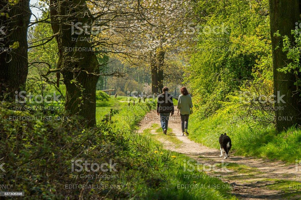 Faire une marche dans les champs au printemps - Photo