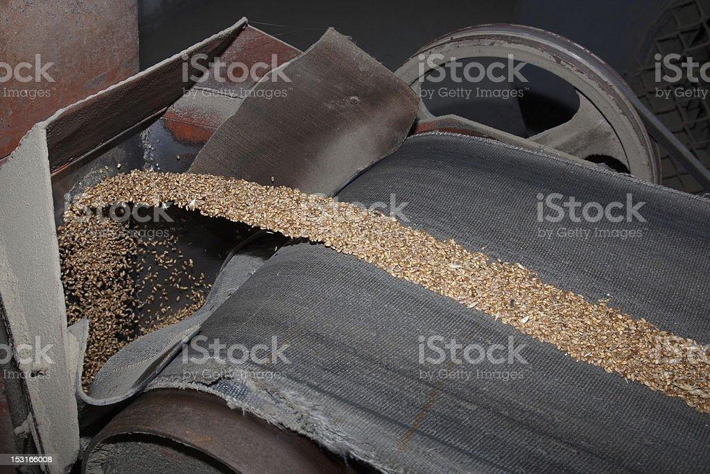 making bread stock photo