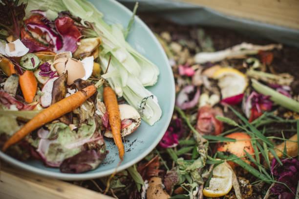 att göra kompost från matrester - food waste bildbanksfoton och bilder