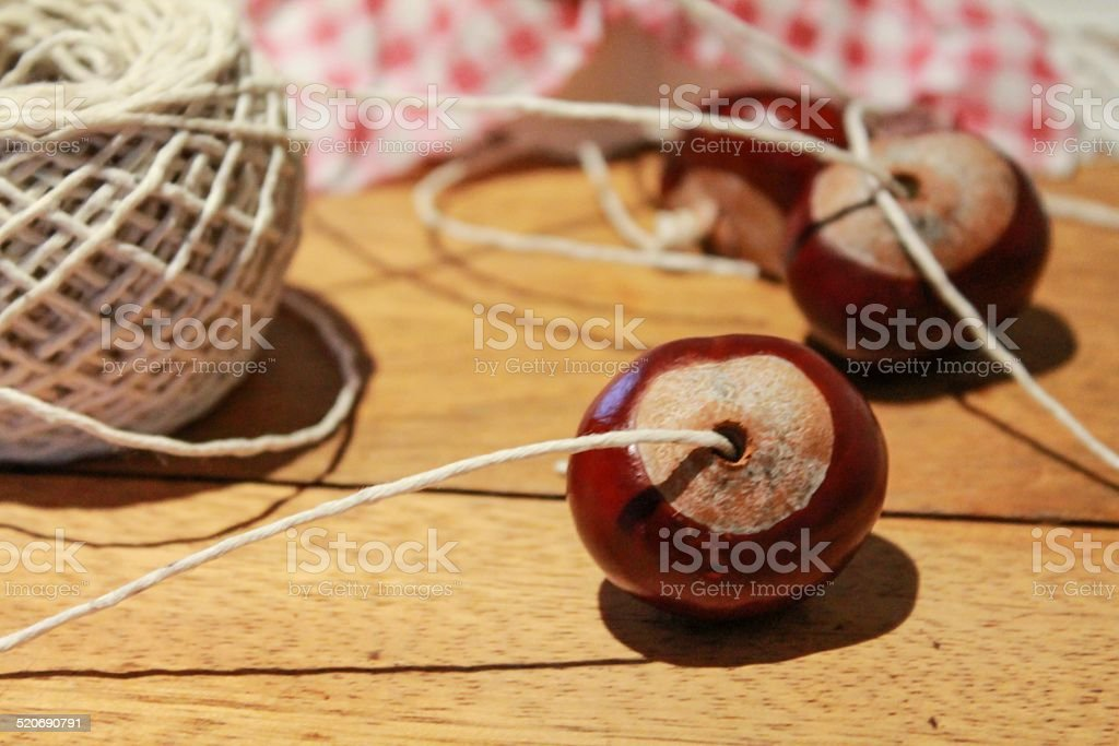 Making Conkers stock photo