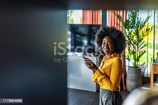 istock Making connections with people all around the world 1173954958