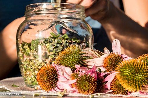 Making Echinacea Tincture