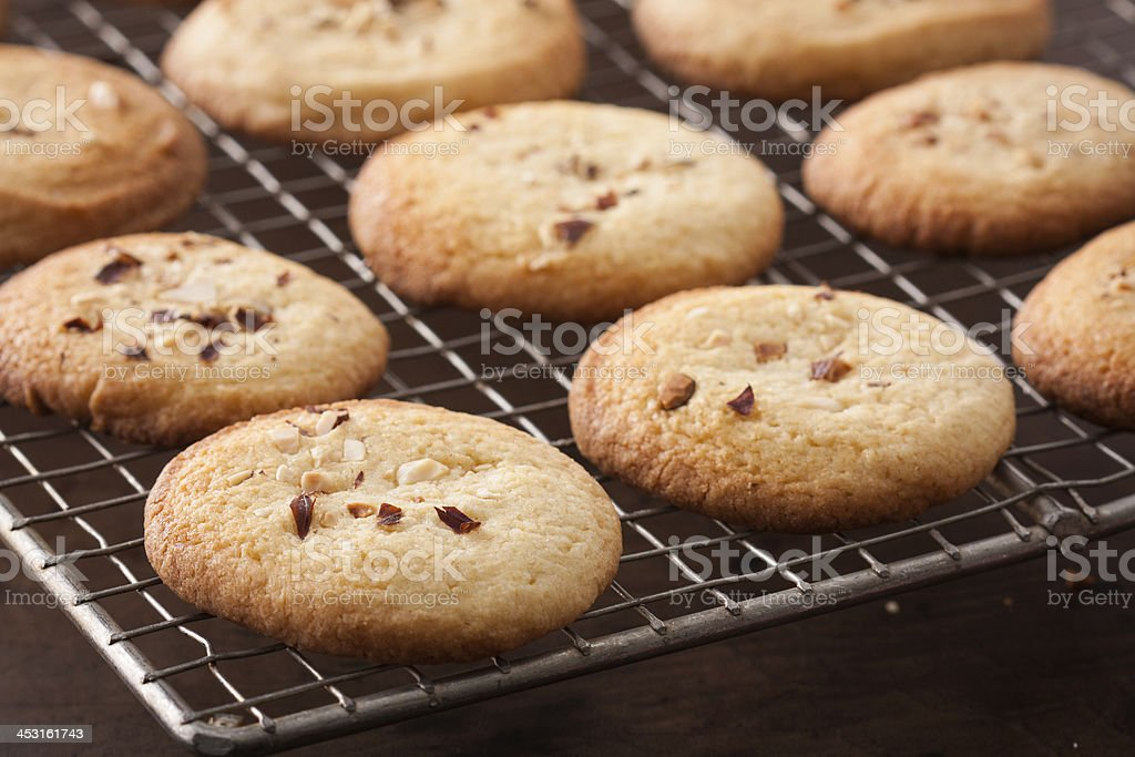 Making homemade almond cookies royalty-free stock photo