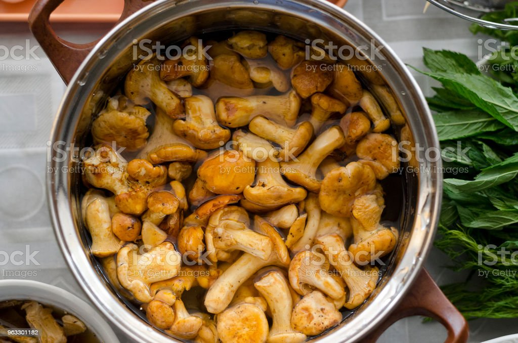 Making homemade mushroom soup stock photo