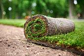 istock making new lawn using roll grass 1225734310