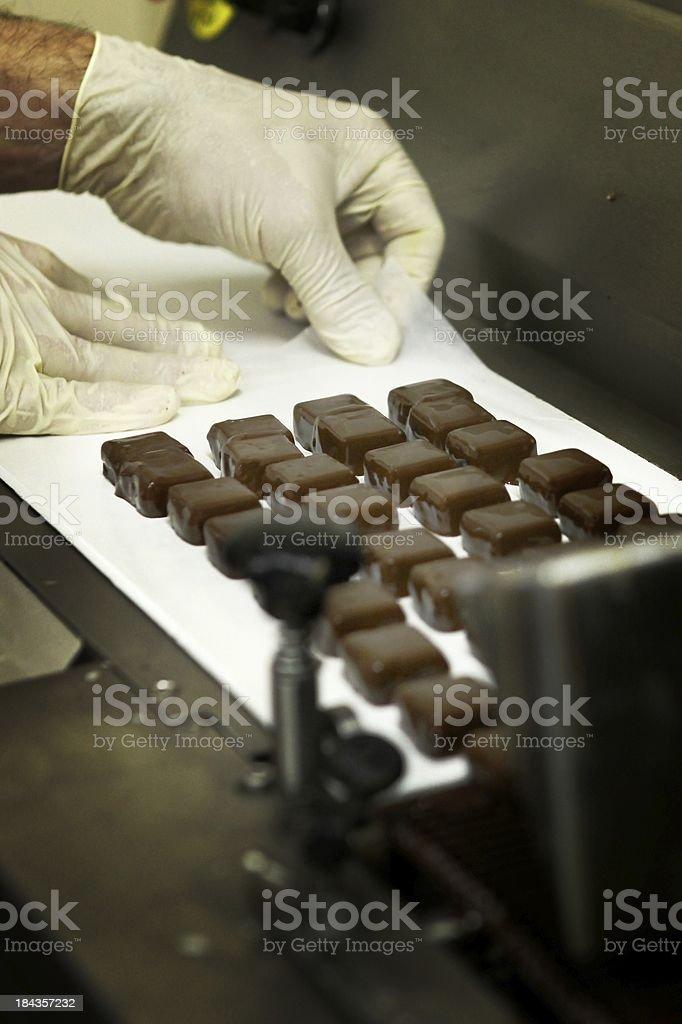 Making of Belgian chocolates royalty-free stock photo