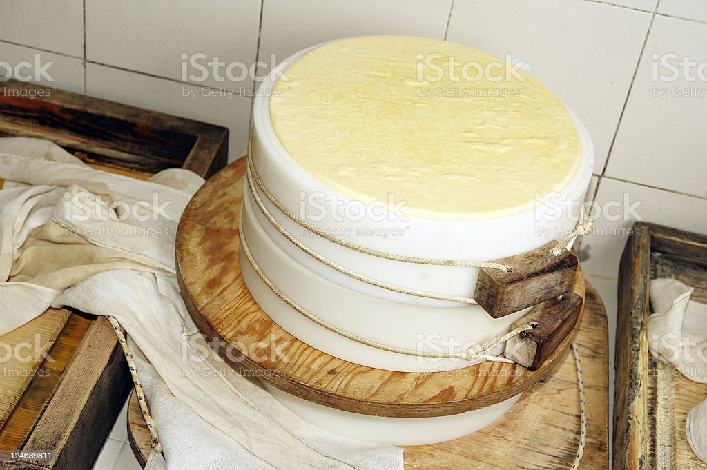 Making of Cow Cheese royalty-free stock photo