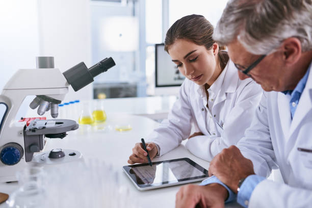 Making sense of their latest findings stock photo