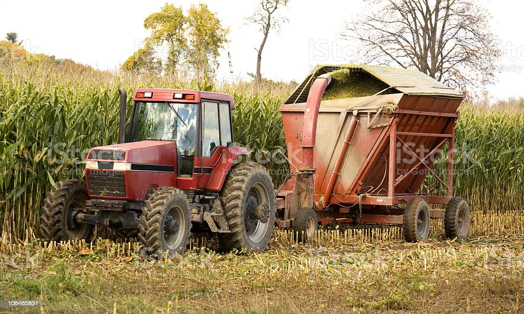 Making Silage royalty-free stock photo