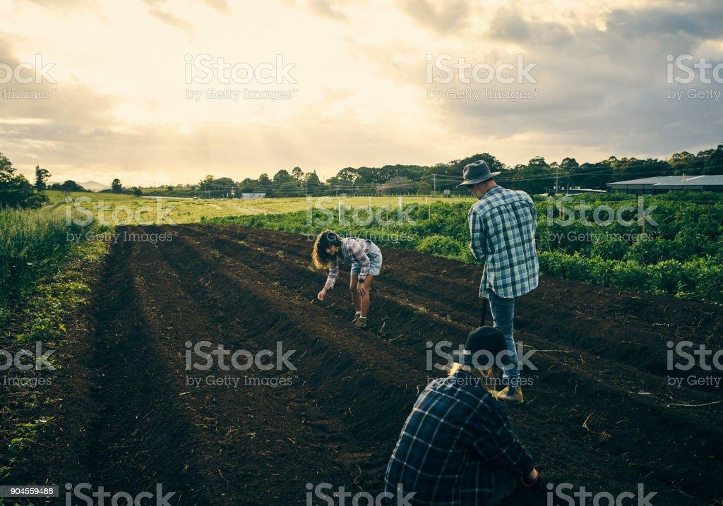 Machen das Land bereit – Foto