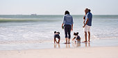 Rear view shot of parents standing with girls playing with wet sand at the beach
