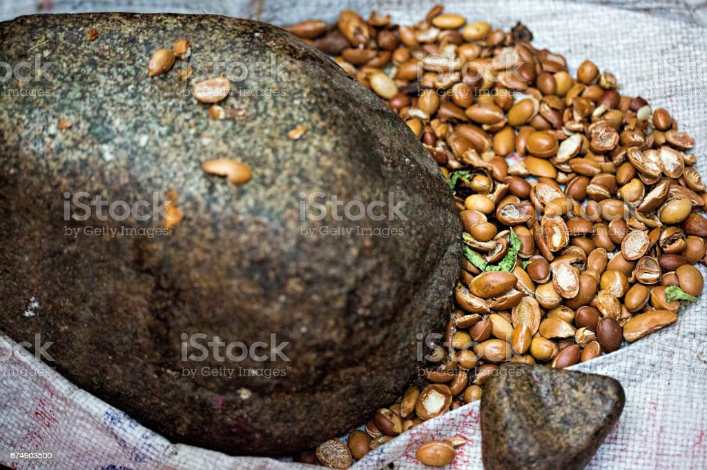 Making traditional Moroccan pure argan oil stock photo