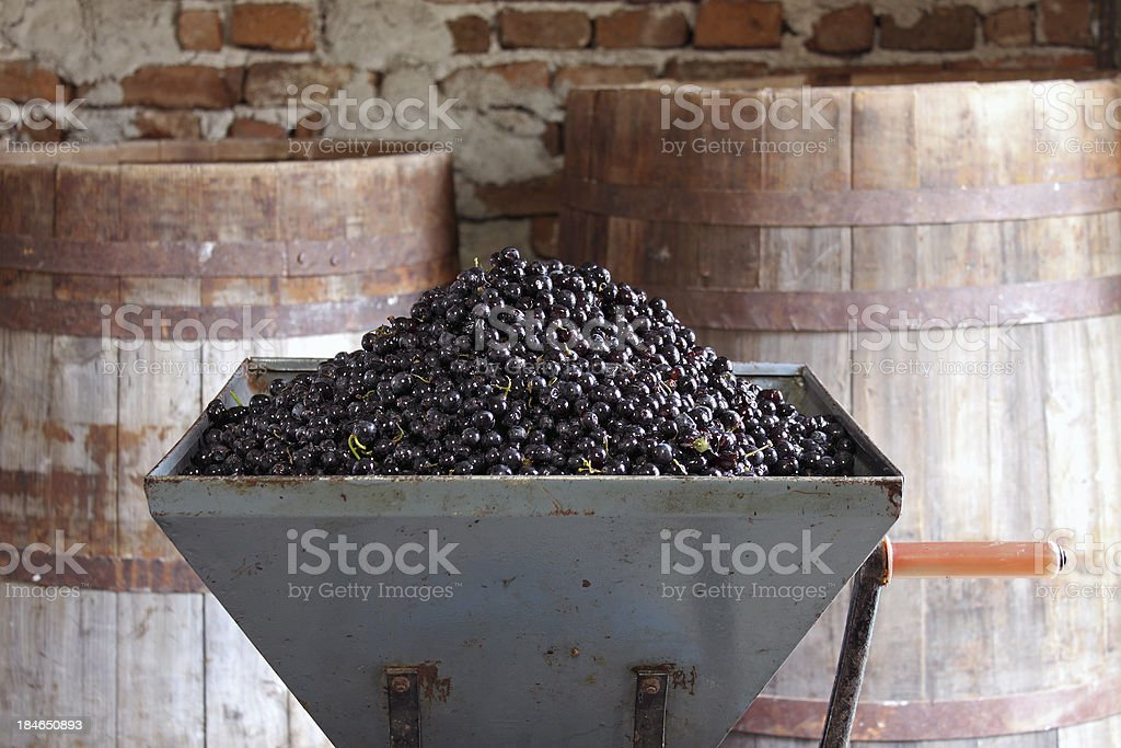 Making wine at home - series stock photo