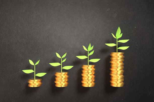 Making your investments grow! stock photo