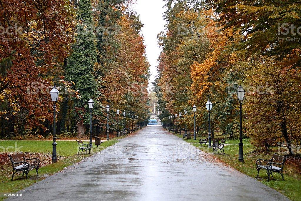 Maksimir park on the rainy day, Zagreb, Croatia stock photo
