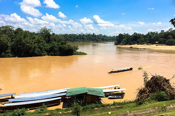 Malaysia river in jungle foto