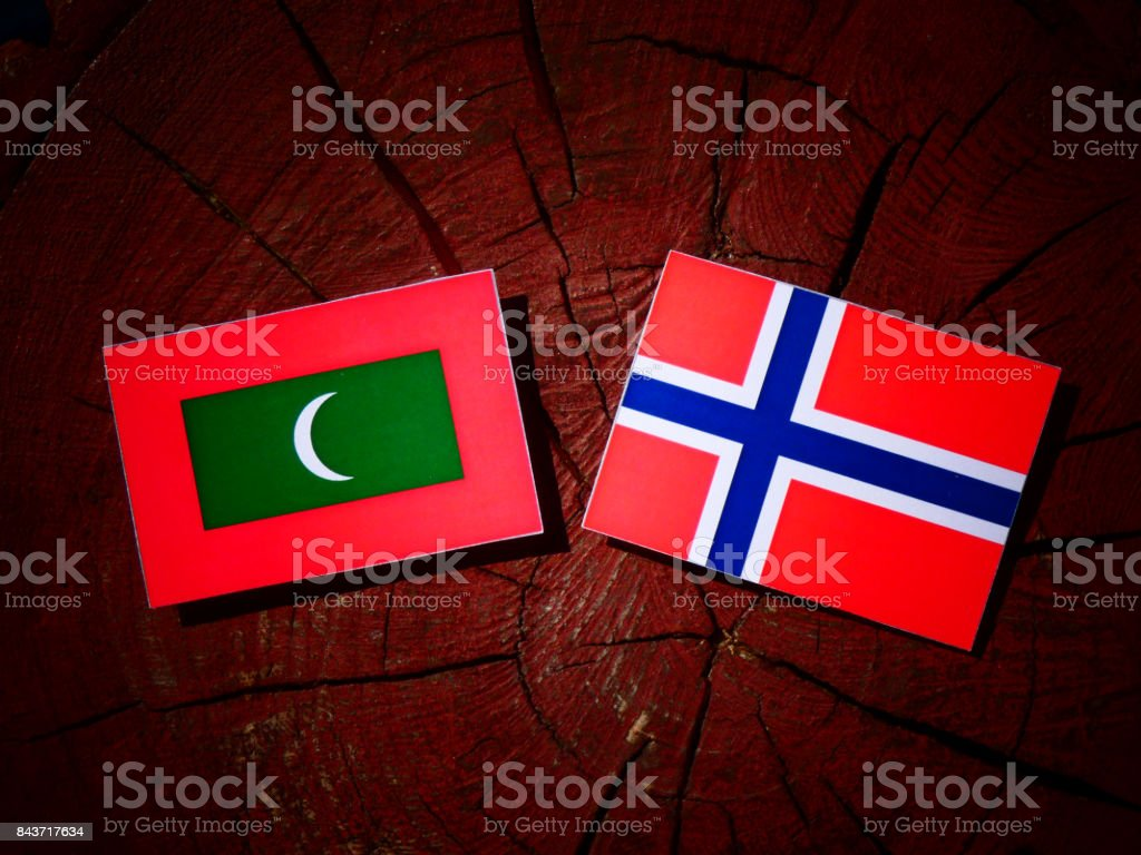Maldives flag with Norwegian flag on a tree stump isolated stock photo