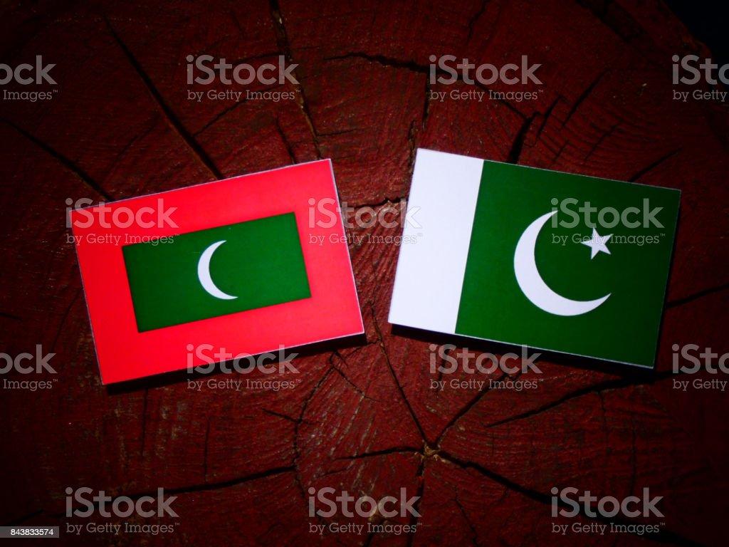 Maldives flag with Pakistan flag on a tree stump isolated stock photo