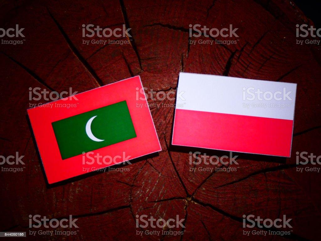 Maldives flag with Polish flag on a tree stump isolated stock photo