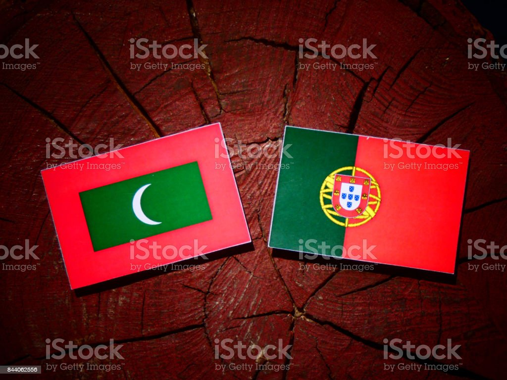 Maldives flag with Portuguese flag on a tree stump isolated stock photo