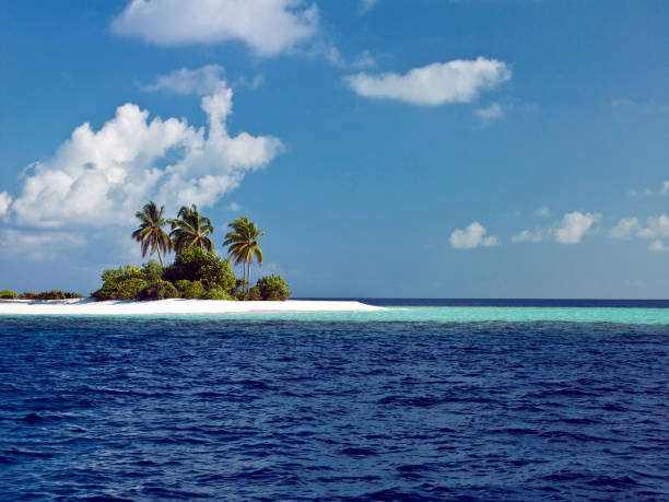 maldives in the indian ocean - desert island stock photos and pictures