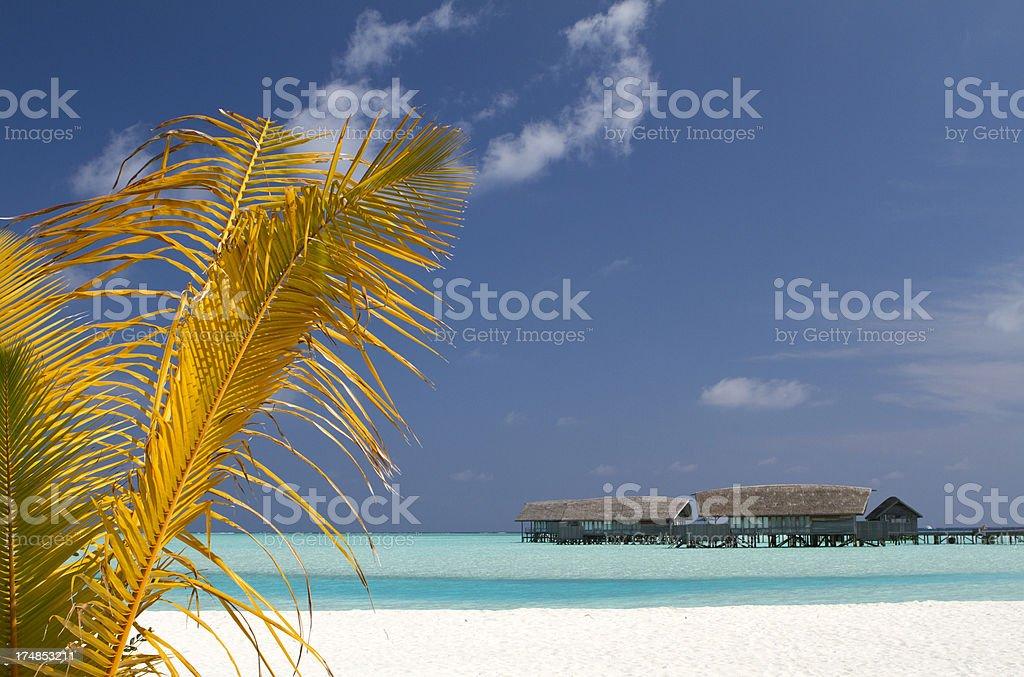 Maldives paradise villa on stilts royalty-free stock photo