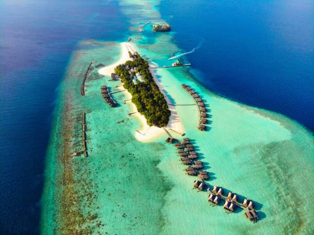 maldives - artificial reef stock pictures, royalty-free photos & images