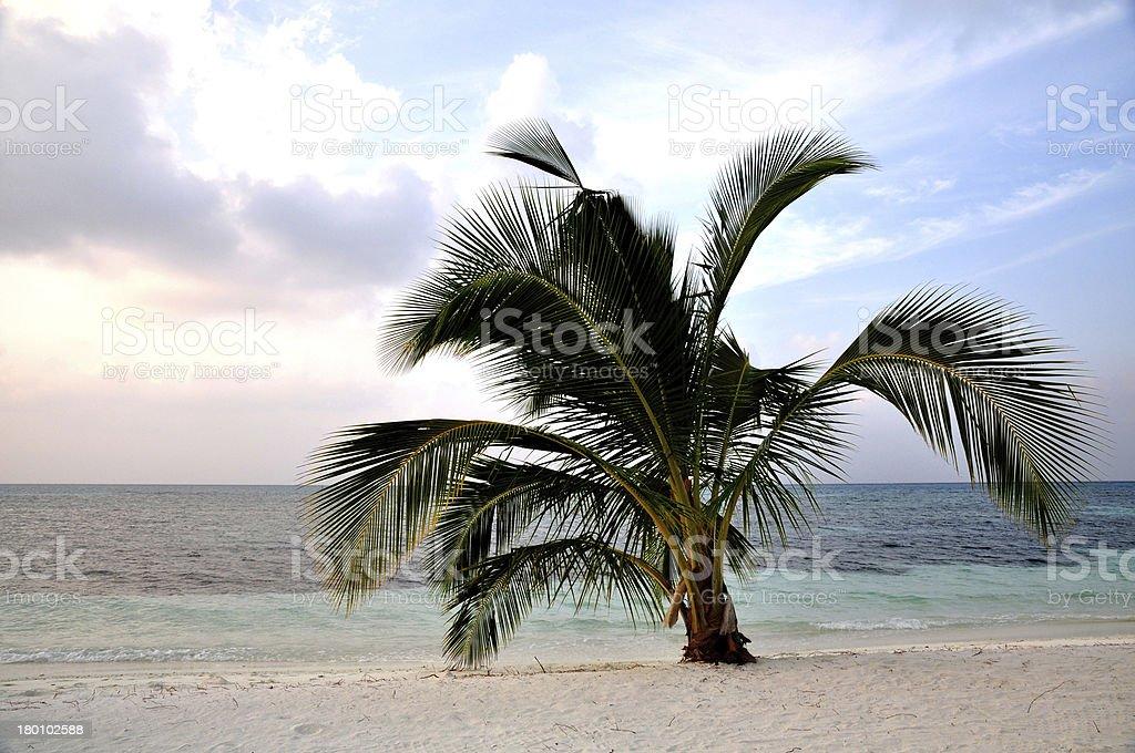 Maldives vacation royalty-free stock photo