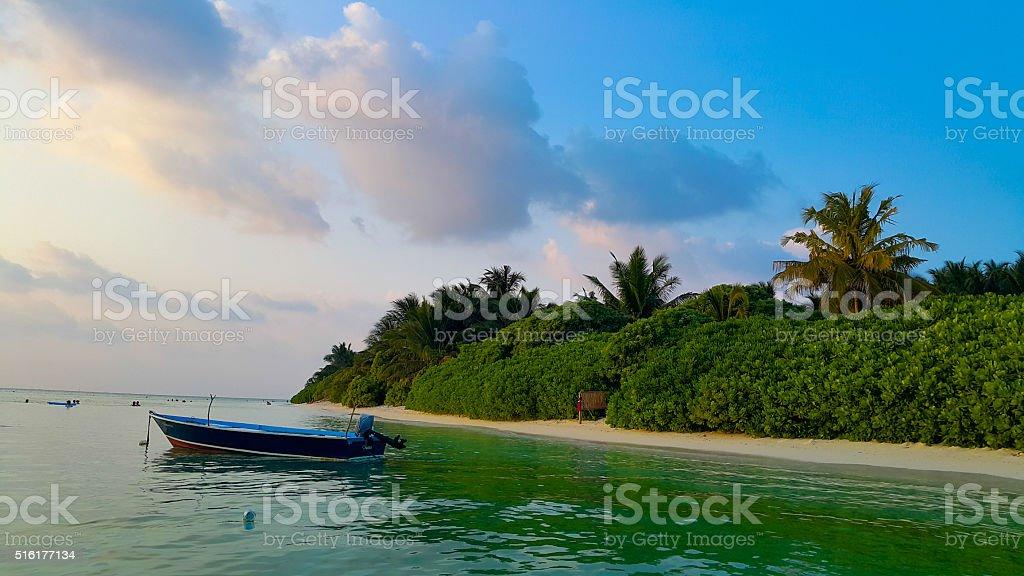 Maldives water and nature - Thoddoo island stock photo